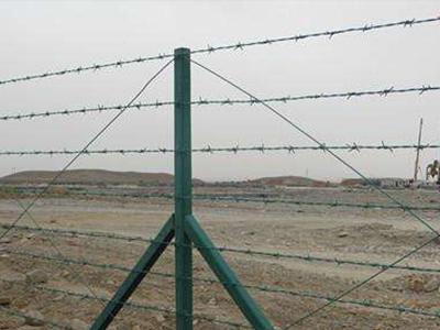 刺丝护栏网